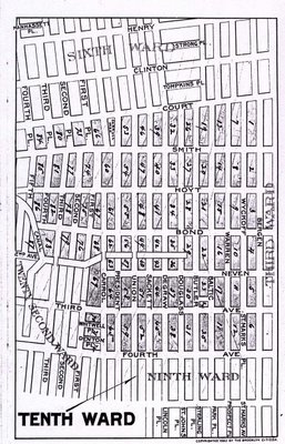 Map of Brooklyn's Tenth Ward, 1893