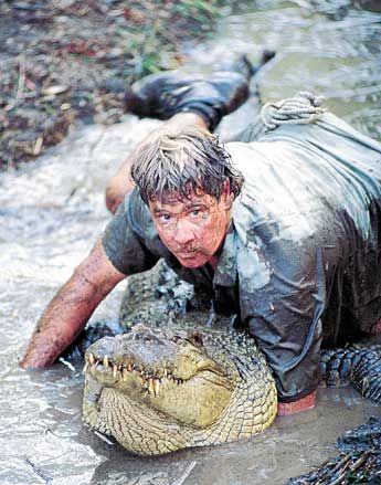 the crocodile hunter steve irwin