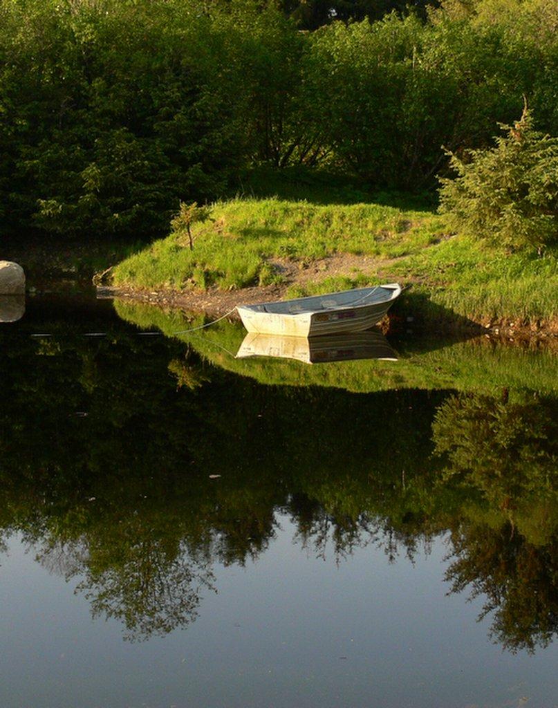 Images of god 39 s creation in juneau alaska fish creek pond for Fish creek pond