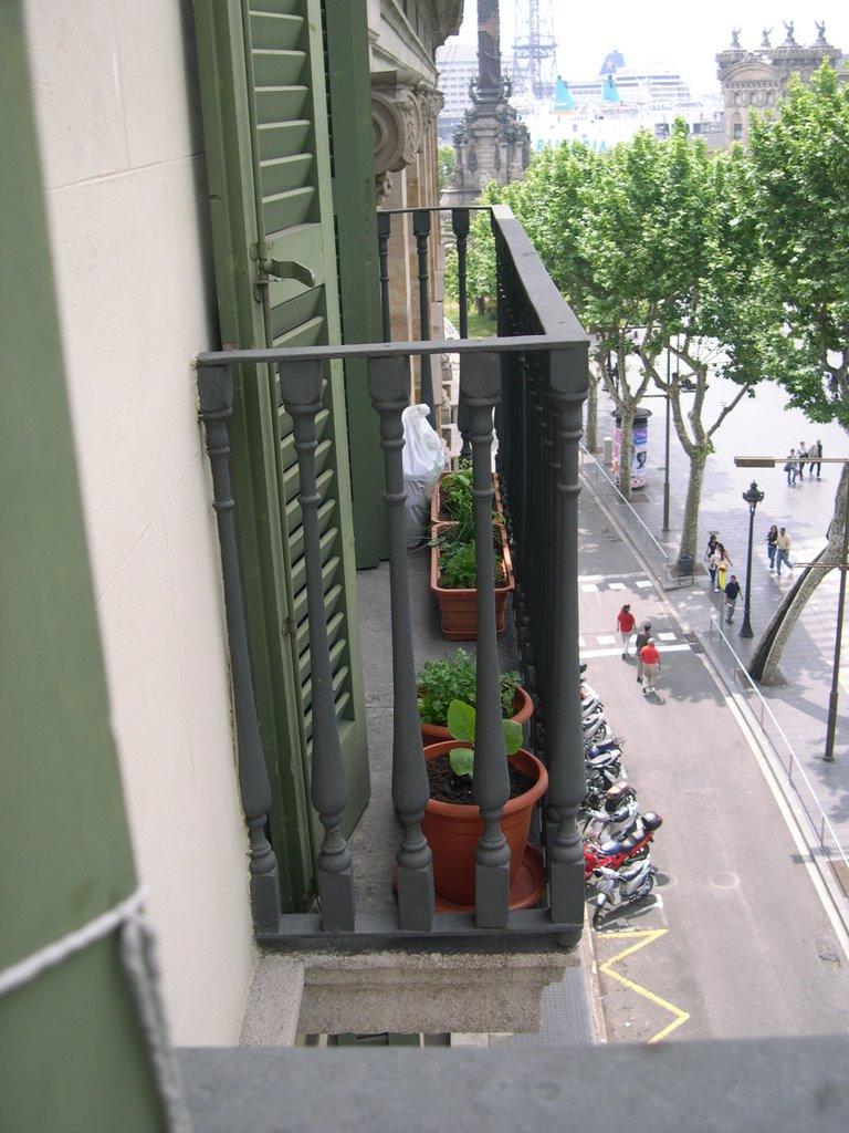 Verduras en mi balc n huerto urbano 11 separemos las - Huerto urbano balcon ...