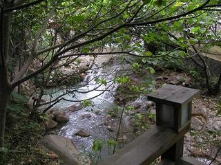 Creek in Beitou Hotspring Park
