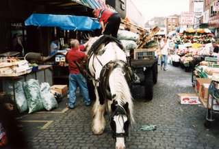 Horse snacking in Farmer's Market