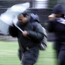 AP photo of today's wind and rain on Long Island