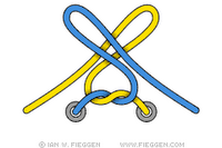 Two loop shoelace knot