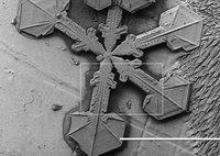 Snowflake under a scanning electron microscope.