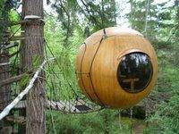 A tree house.