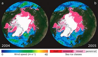 Comparison of artic ice mass between 2004 and 2005.