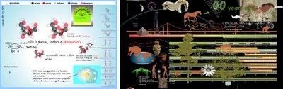 Left, information on cell biology. Right, evolution slider