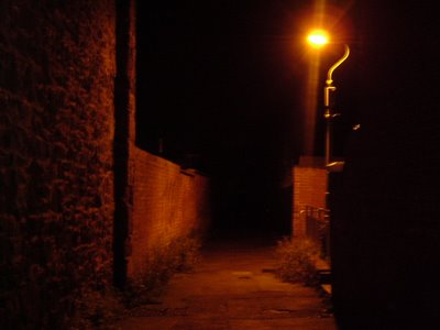 The grimy alleyway looks dark, but its your only way home.