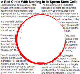 a red circle with nothing in it: sperm stem cells; A. Revich