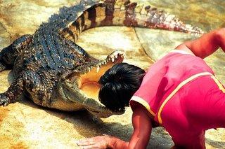 Crocodile_Show_Thailand