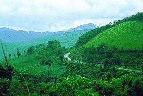 Doi Inthanon View Chiangmai Thailand