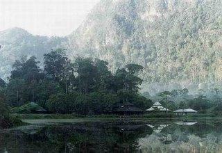 Thaleban Swamps Satun Thailand
