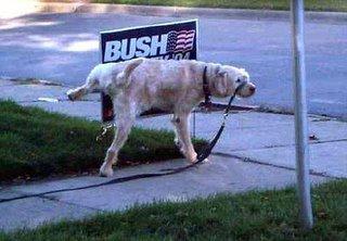 dog peeing on bush poster