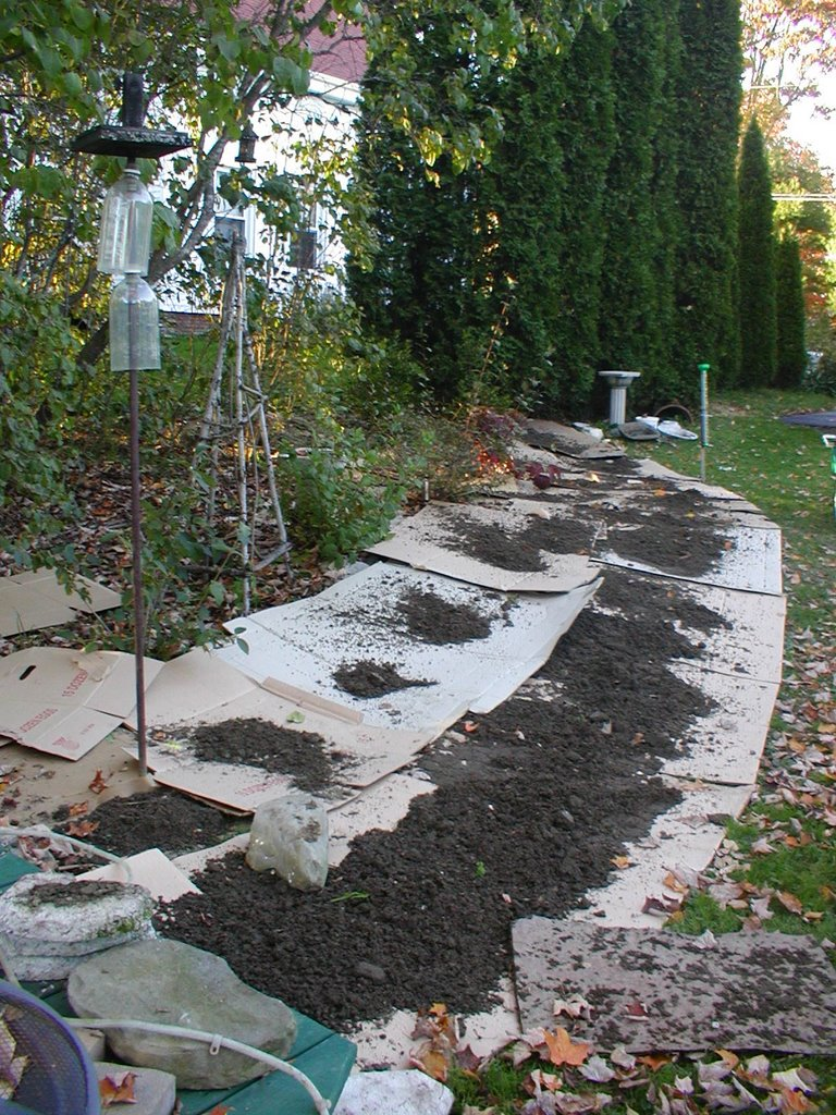 a backyard orchard henbogle