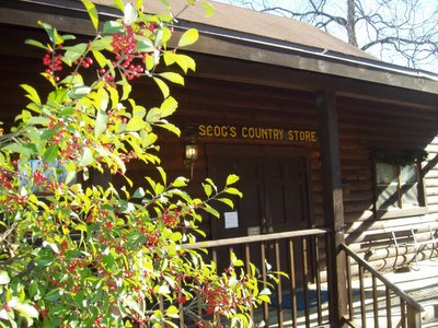 Scog s log cabin greenville daily photo for Craft stores greenville sc