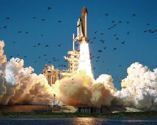 NASA photo of Challenger's final liftoff.