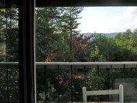 view through glass doors