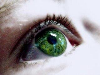 El ojo de la sociedad