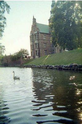 Fairytale Swan