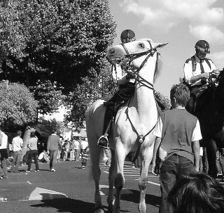 Police horse at Notting Hill Carnival gives me the eye