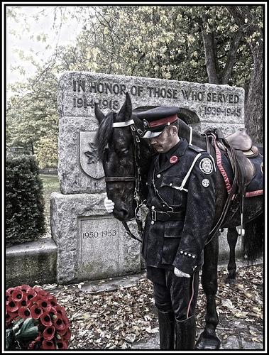 Bay Ridge Blog: Remembrance Day