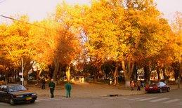 Atardecer de otoño