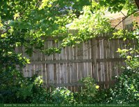 Board fence