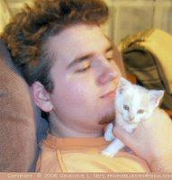 Casper the kitten