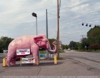 Pink elephant, Guthrie, KY