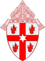 Saginaw Diocese