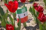 Somaliland Dalkayga