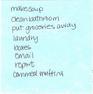 shannon's to do list