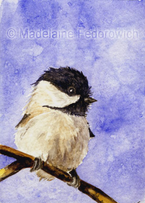 Winter Chickadee ACEO