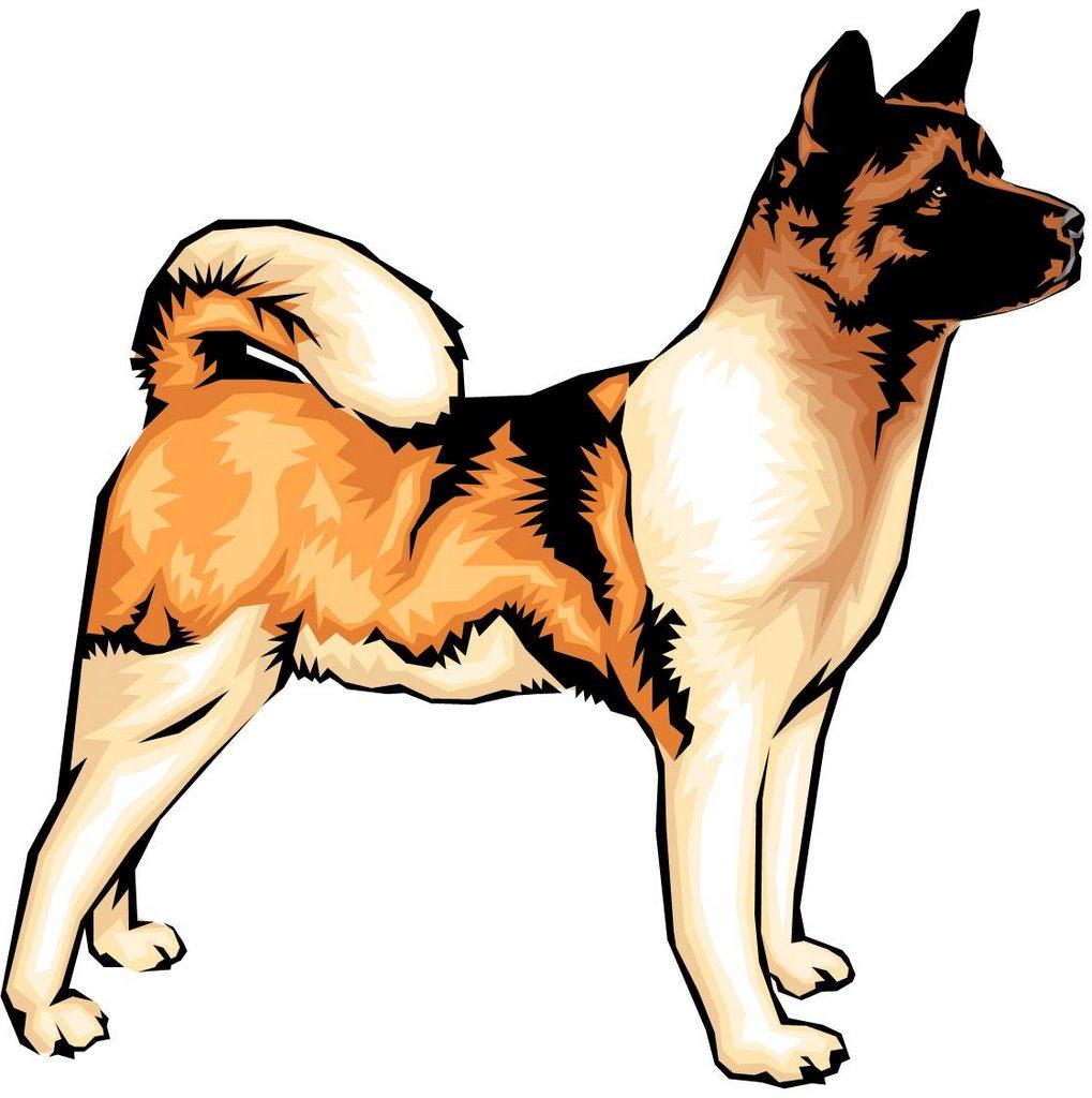el perro: