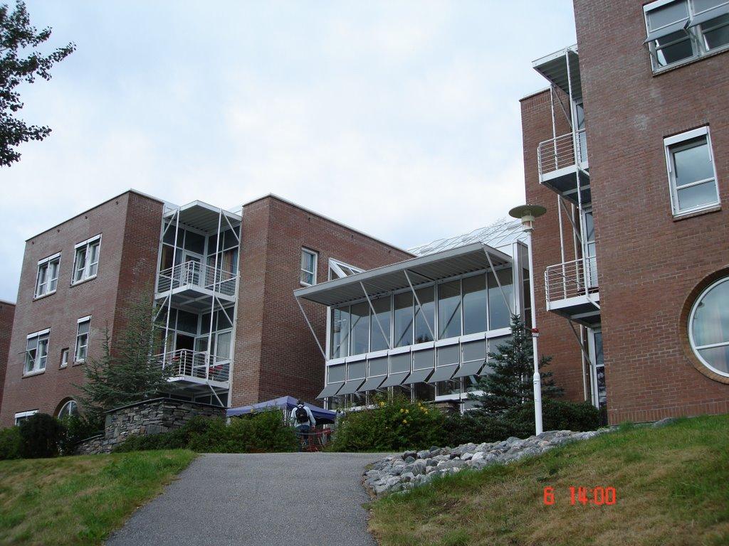høgskolen i molde