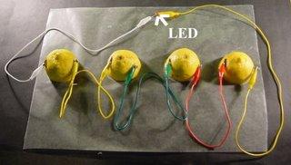 Limon Pili Yapımı