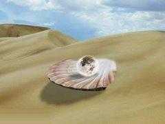 The Desert Pearl