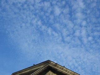 blue sky (onemorehandbag)