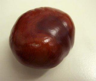 chestnut (onemorehandbag)