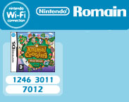 Nintendo DS Wi-Fi codes