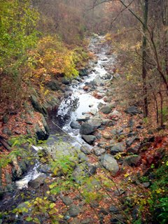 Stream at park entrance races towards Potomac River