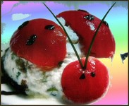 una delle mie ricette su free-cuisine:le coccinelle