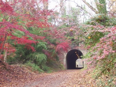 Lovely stone tunnel framed by bamboo and red-pink japanese scarlet maple on leafy hills dipping towards an asaphalt path, leading past the viewer. a man is visible at the far end of tunnel, very tiny.
