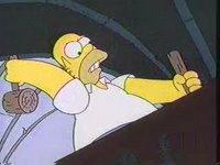 Homer Van Helsing