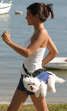 """doggybag24006 228x374 Novidades para seu """"filho"""" de 4 patas!!! AHAHAHA"""