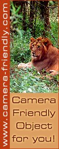 Camera Friendly Objects - Wildlife