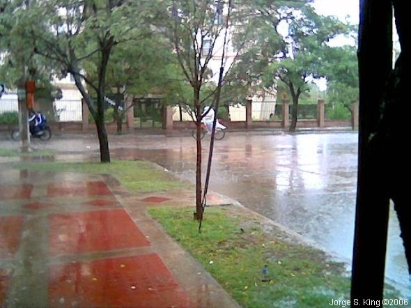 Bajo la lluvia - Foto: Jorge S. King
