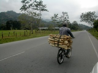man carrying wood on bicycle