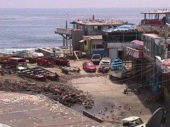 Puerto Pesquero Popotla, en compás de espera